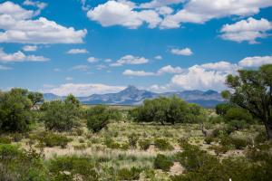 Magic Ranch, Deming, NM 88030