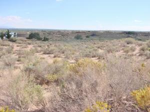 6400 Milpa Alta Road NE, Rio Rancho, NM 87144