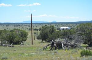 32 Scruffy Trail E-W Ranch 800 ac, Quemado, NM 87829