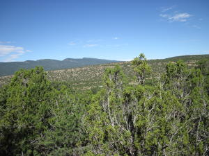 30 Rattlesnake Ridge, Tijeras, NM 87059