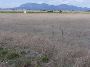 0 Captian Street, Moriarty, NM 87035