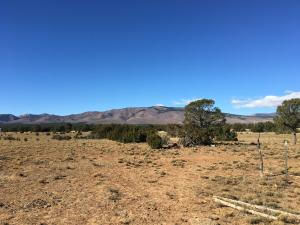 90 W Ten Pines Road, Torreon, NM 87061