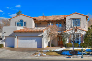 Property for sale at 11048 Bridgepointe Court NE, Albuquerque,  NM 87111