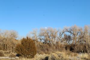 TBD RIO ARRIBA COUNTY RD 100, Chimayo, NM 87522
