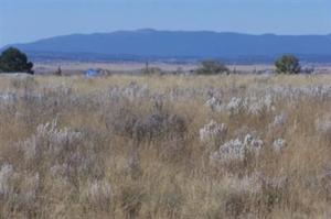 0 Bay Street, Moriarty, NM 87035
