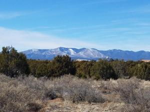 Yucca Avenue, Mountainair, NM 87036
