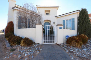 Beautiful Entry courtyard and arched wood door. Move in ready!!!