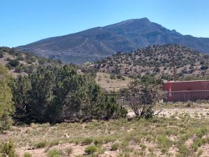 Las Brisas Loop, Placitas, NM 87043