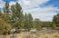36 Dove Valley Road, Pie Town, NM 87827