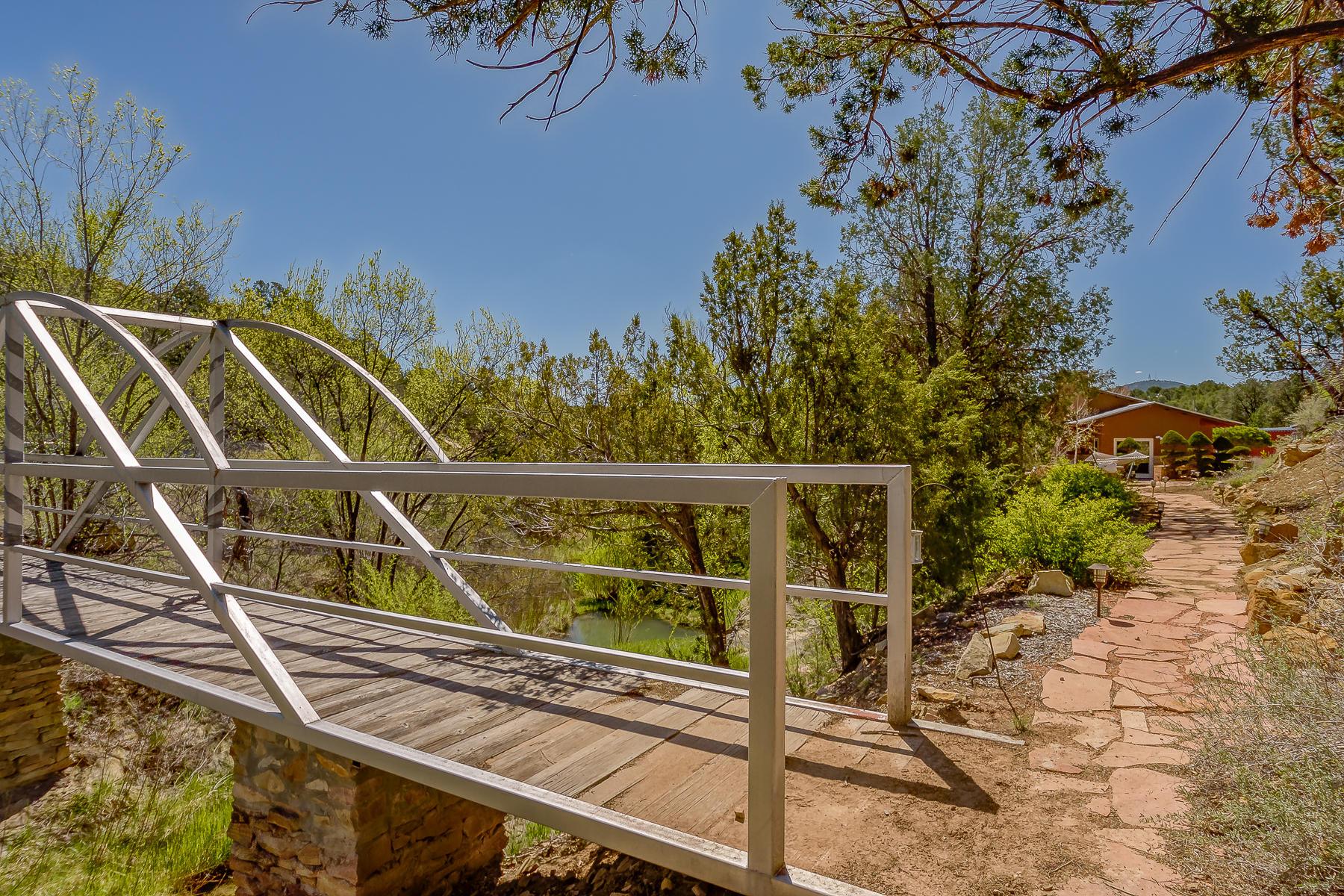 Bridge on Neighboring Lot
