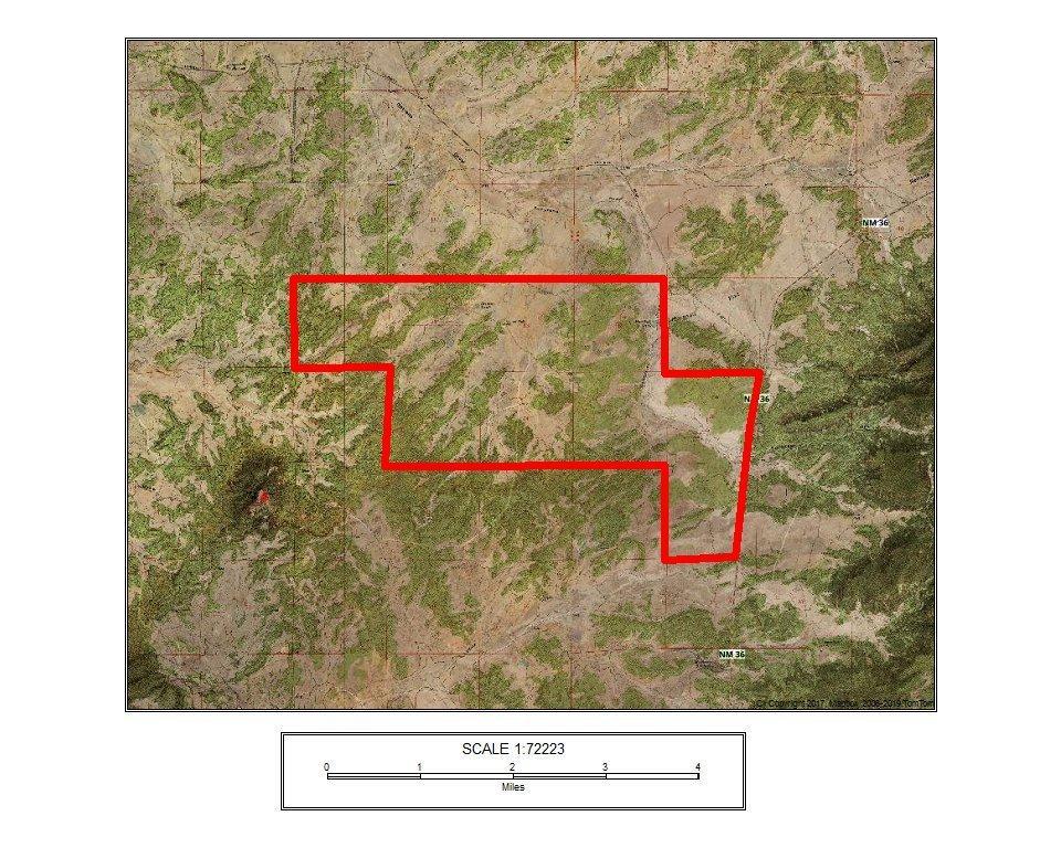 Satellite Image (Hybrid Street)