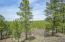 2160 State Hwy 595, Lindrith, NM 87029