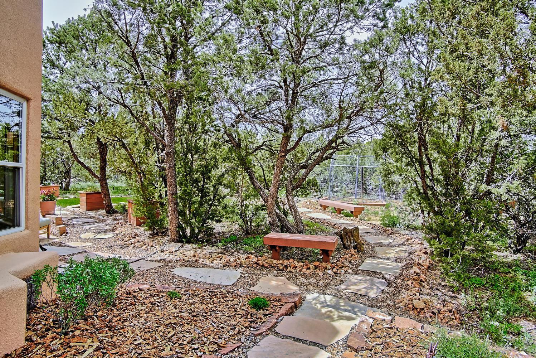 6 Chaco Loop Sandia Park NM-large-072-69