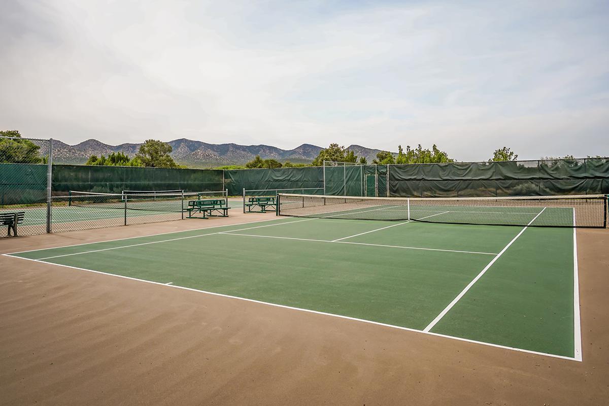 paako tennis