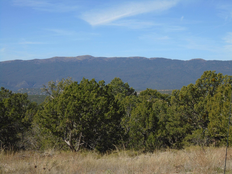Ridge 11