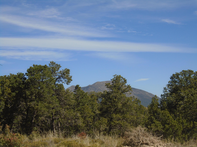 Ridge 12