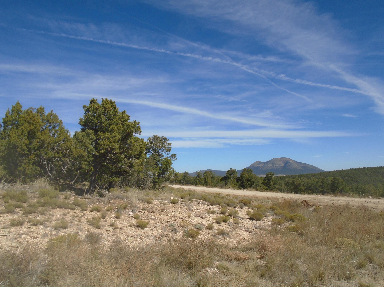 Ridge 14