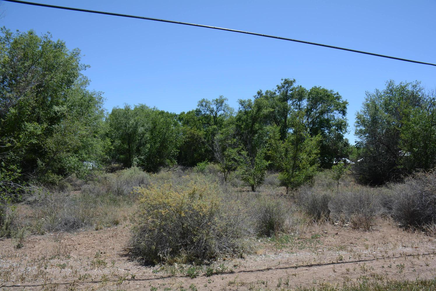 59 West Ella Drive-large-030-25-One Acre