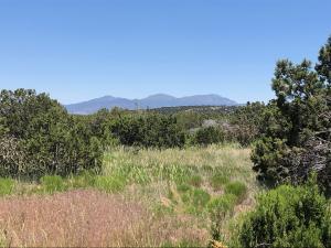 0 Kings Meadow Road, Sandia Park, NM 87047