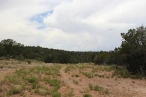 23 Dove Lane, Edgewood, NM 87015