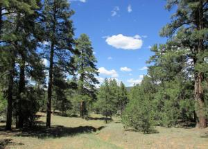 Lot 22 Monte Vista Lane, Ramah, NM 87321
