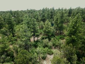 21 Mockingbird Drive, Tijeras, NM 87059