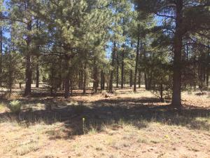 Lot 74 Timber Lake Rd., Ramah, NM 87321