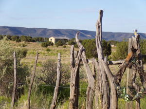 Cottage Loop, Mountainair, NM 87036