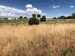 42 Range Road, Edgewood, NM 87015