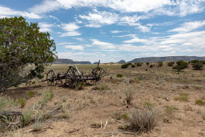 104 Orona Road, Quemado, NM 87829