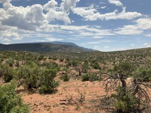 281 Star Meadow Court, Placitas, NM 87043