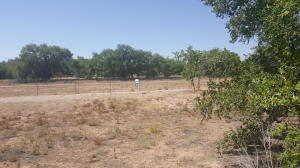 VACANT LOT ON LEAL RD, Corrales, NM 87048