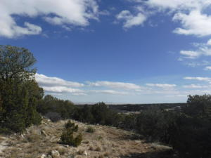 Morper Road, Lot 2B, Edgewood, NM 87015