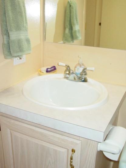 Vanity in the Guest Bathroom