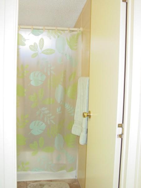 Bath Tub/shower in Guest Bathroom