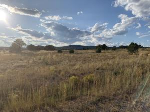 25 Brent Drive, Edgewood, NM 87015