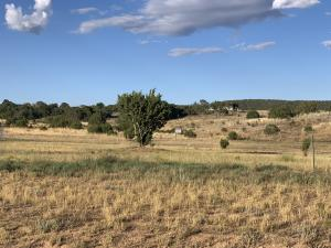 0 Brent Road, Edgewood, NM 87015