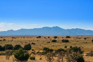 100 Rough Road, Stanley, NM 87056
