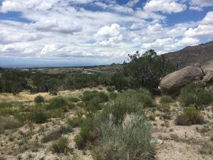 53 Caballo De Fuerza Road, Albuquerque, NM 87123