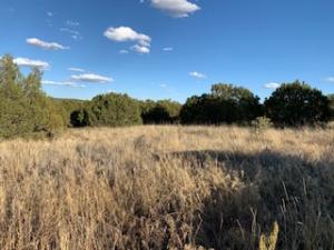 0 Adobe ln, Sandia Park, NM 87047