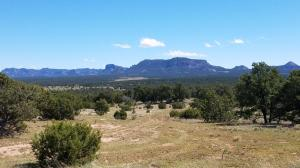 203 York Ranch Road, Pie Town, NM 87827