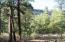 21A CEDAR Road, Jemez Springs, NM 87025