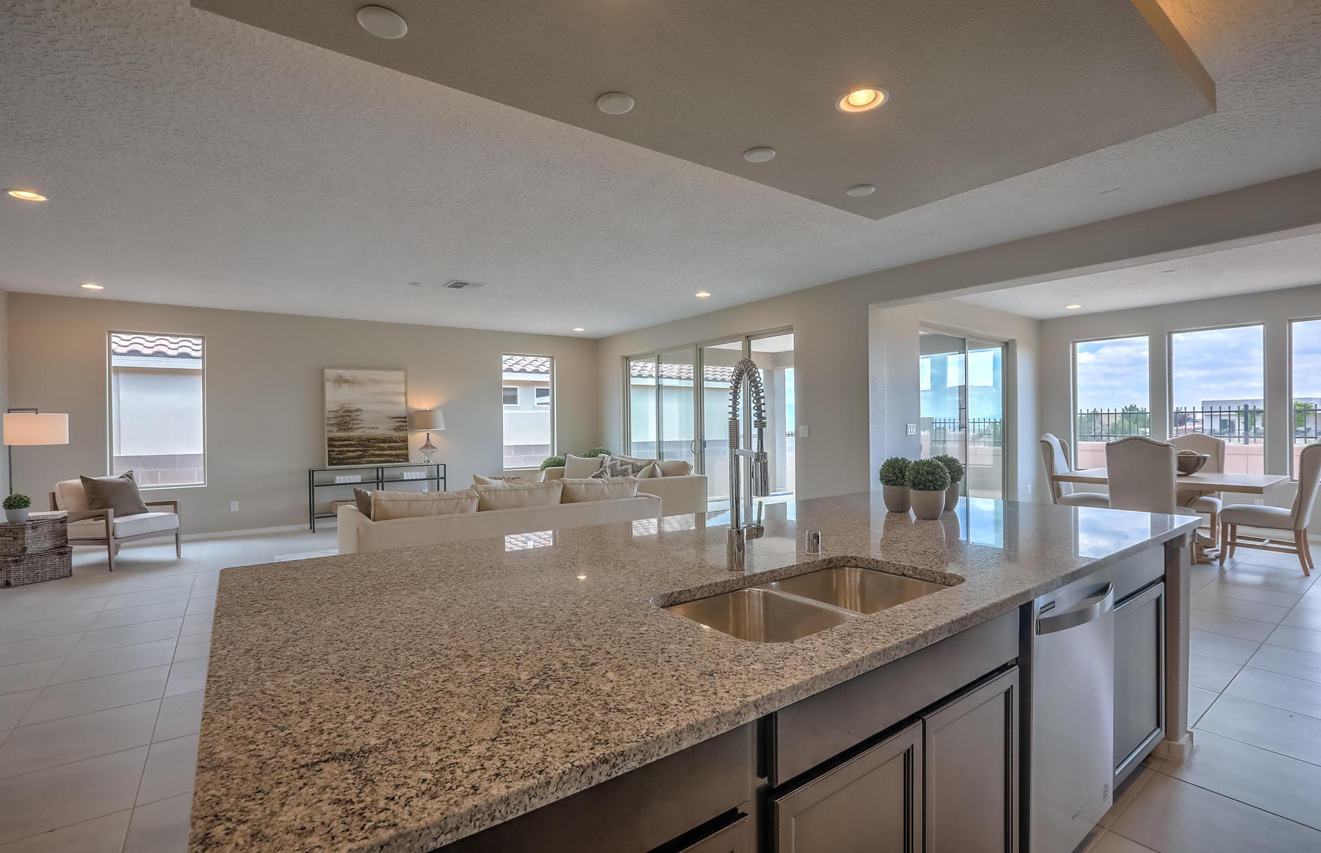 Granite Kitchen Island and Dishwasher