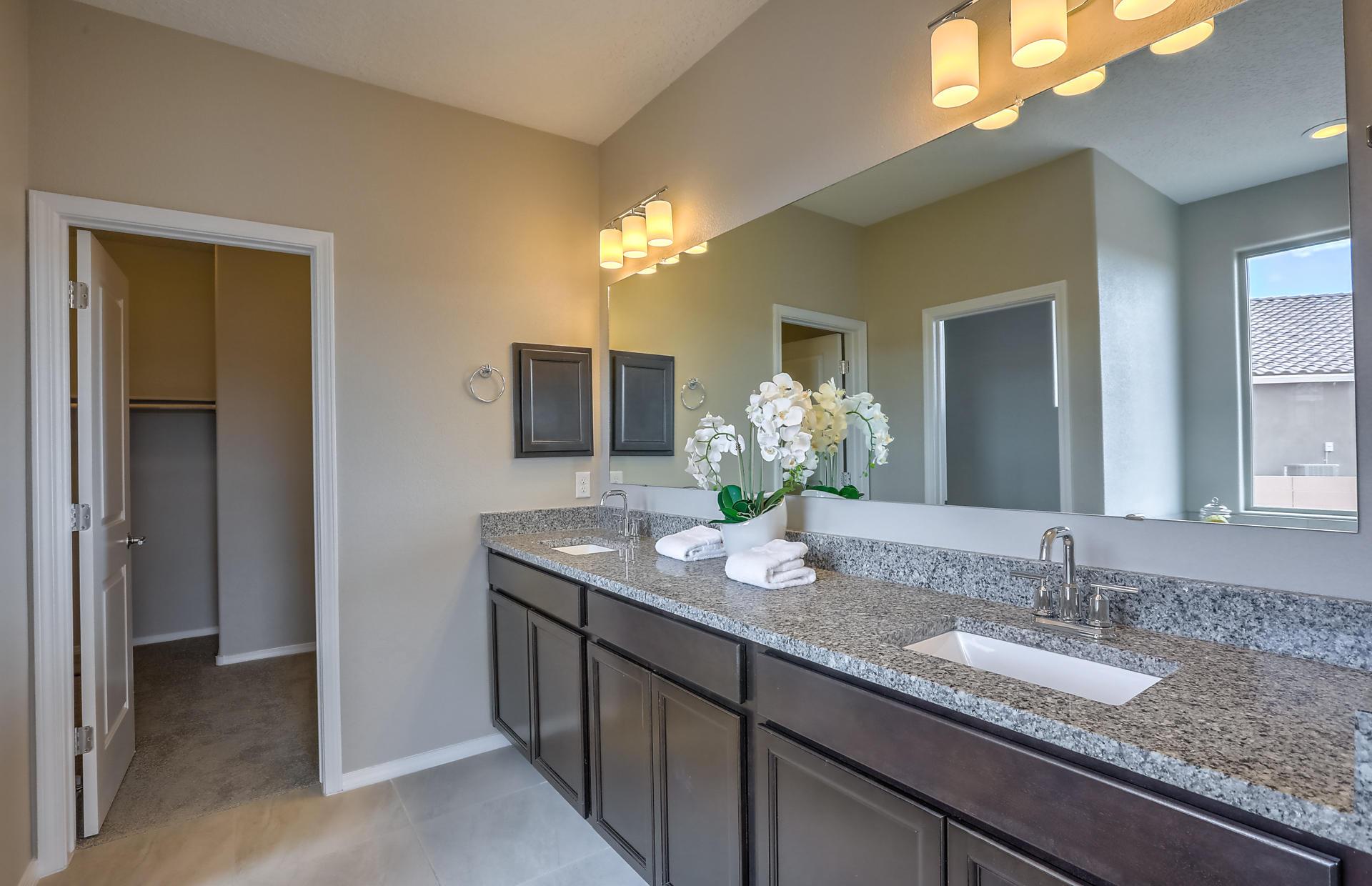 Dual Sinks with Granite
