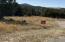 8 Sedillo Hill Place, Tijeras, NM 87059