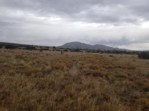 31 Indian Sky Lane, Edgewood, NM 87015