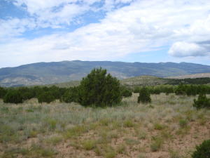 480 & 490 Forest Road 462, Tijeras, NM 87059
