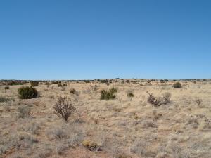 0 Sorrento (U24B19L39) Road NW, Rio Rancho, NM 87144