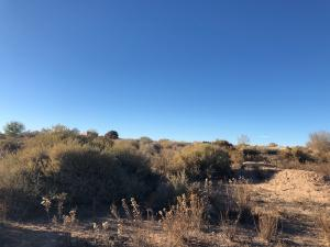 105 Richard Lane, Corrales, NM 87048