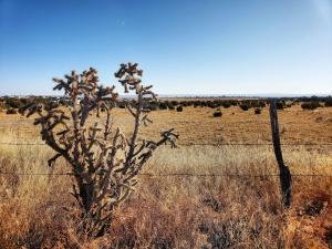 V Hill Road, Moriarty, NM 87035